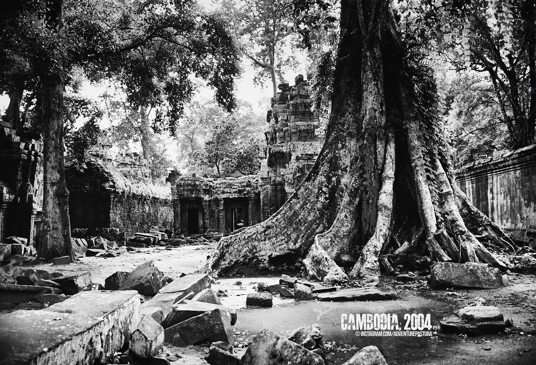 Ruins in the jungle, Angkor Wat, Cambodia. Photo by © Piero Zilio.